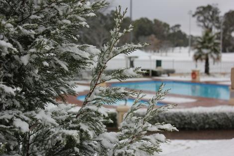 Winter garden at Riviera on Vaal